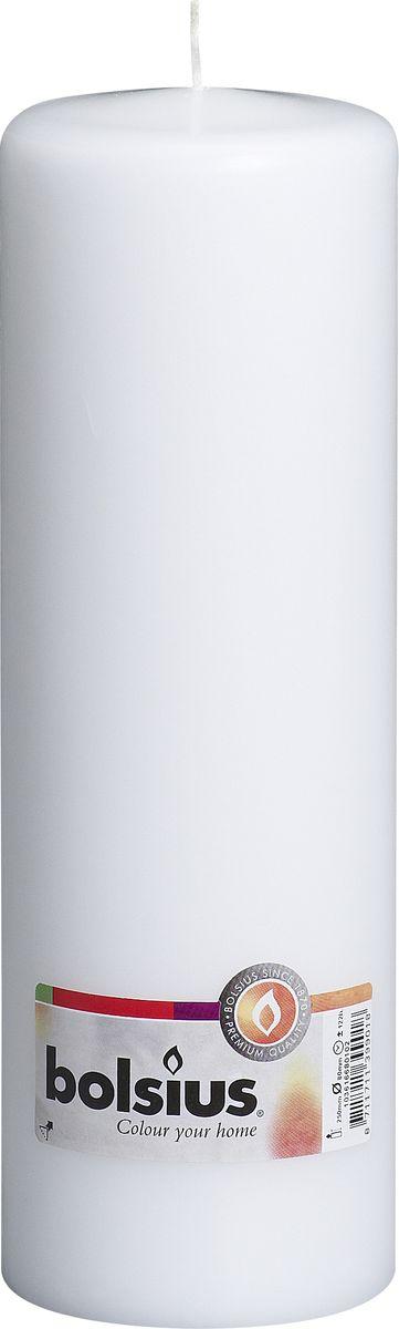 Свеча Bolsius, цвет: белый, высота 25 см103616680102Свеча Bolsius выполнена из парафина в классическом стиле. Ее можно поставить в любое место и она станет ярким украшением интерьера. Свеча Bolsius создаст незабываемую атмосферу, будь то торжество, романтический вечер или будничный день.