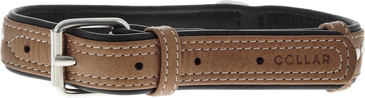 Ошейник для собак CoLLaR SOFT, цвет: коричневый, черный, ширина 2,5 см, обхват шеи 38-49 см. 72070120710Ошейник для собак CoLLaR SOFT изготовлен из высококачественной кожи. Он устойчив к влажности и перепадам температур. Сверхпрочные нити, крепкие металлические элементы делают ошейник надежным и долговечным.Обхват ошейника регулируется при помощи пряжки. Ошейник оснащен металлическим кольцом для крепления поводка. Изделие отличается высоким качеством, удобством и универсальностью. Минимальный обхват шеи: 38 см. Максимальный обхват шеи: 49 см. Ширина ошейника: 2,5 см. Длина ошейника: 53 см.