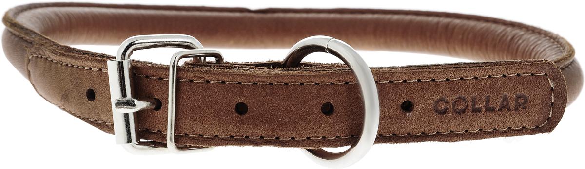 Ошейник для собак CoLLaR SOFT, цвет: коричневый, диаметр 1,3 см, обхват шеи 45-53 см02506Ошейник для собак CoLLaR SOFT, выполненный из натуральной кожи, устойчив к влажности и перепадам температур. Крепкие металлические элементы делают ошейник надежным и долговечным. Изделие отличается высоким качеством, удобством и универсальностью. Размер ошейника регулируется при помощи пряжки, зафиксированной на одном из 5 отверстий. Минимальный обхват шеи: 45 см. Максимальный обхват шеи: 53 см. Диаметр ошейника: 1,3 см.