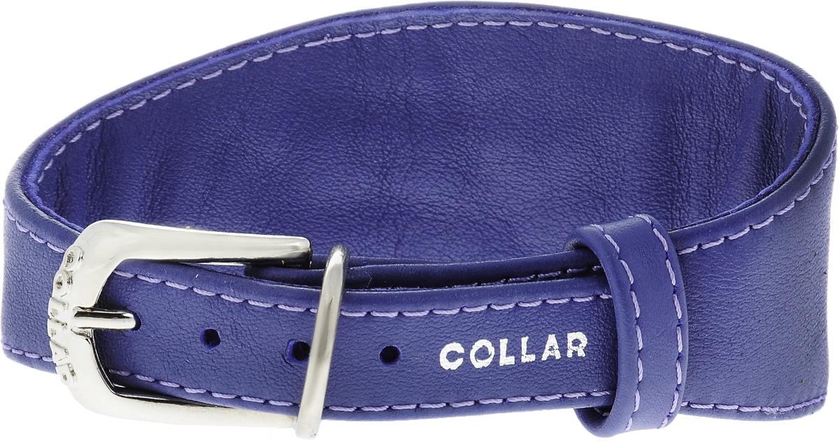 Ошейник для борзых собак CoLLaR Glamour, цвет: фиолетовый, ширина 1,5 см, обхват шеи 23-27 см34649Ошейник для борзых собак CoLLaR Glamour, выполненный из натуральной кожи, устойчив к влажности и перепадам температур. Крепкие металлические элементы делают ошейник надежным и долговечным. Изделие отличается высоким качеством, удобством и универсальностью. Размер ошейника регулируется при помощи пряжки, зафиксированной на одном из 5 отверстий. Минимальный обхват шеи: 23 см. Максимальный обхват шеи: 27 см. Минимальная ширина: 1,5 см. Максимальная ширина: 5 см.