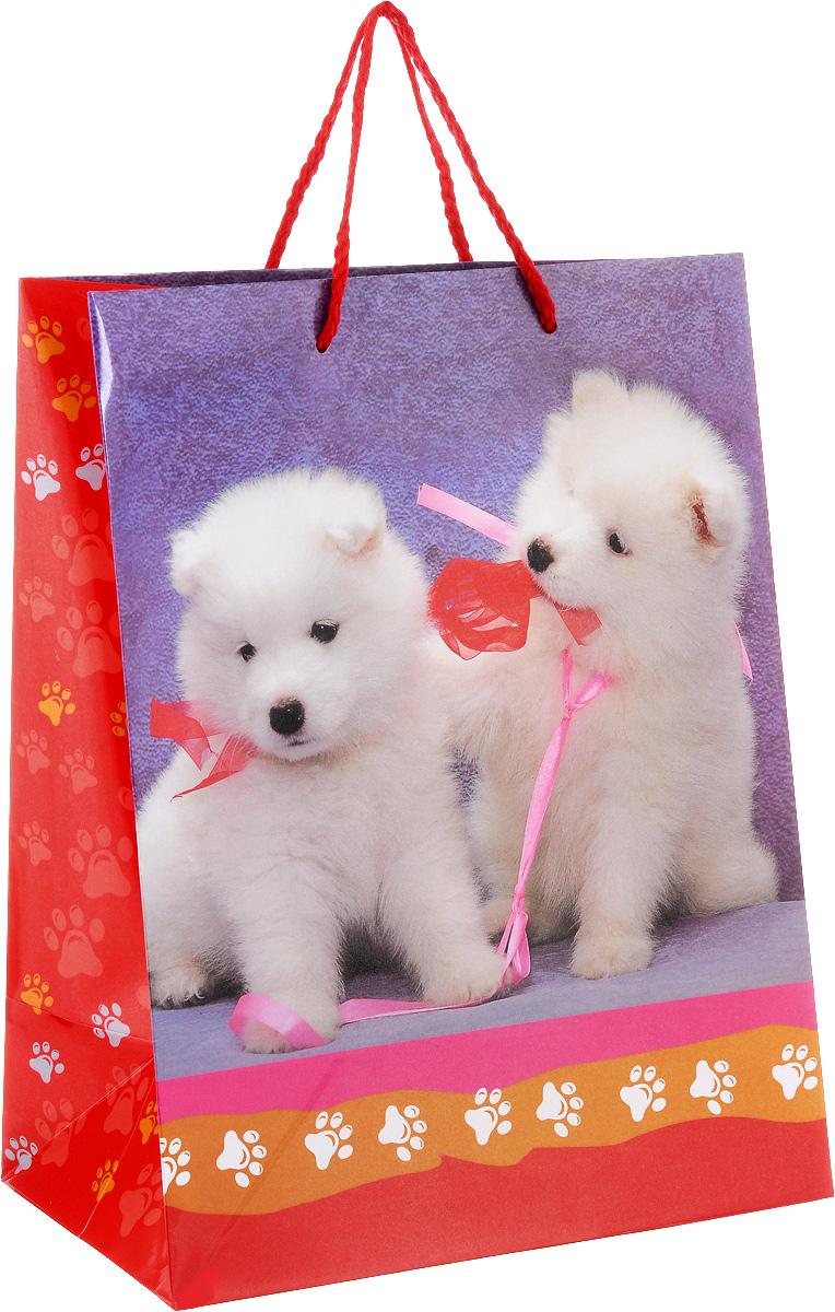 Играем вместе Пакет подарочный Собаки, 26 х 32 х 14 см7716583Подарочный пакет Играем вместе Собаки, изготовленный из плотной глянцевой бумаги, станет незаменимым дополнением к выбранному подарку. Для удобной переноски на пакете имеются две ручки из шнурков.Подарок, преподнесенный в оригинальной упаковке, всегда будет самым эффектным и запоминающимся. Окружите близких людей вниманием и заботой, вручив презент в нарядном, праздничном оформлении.