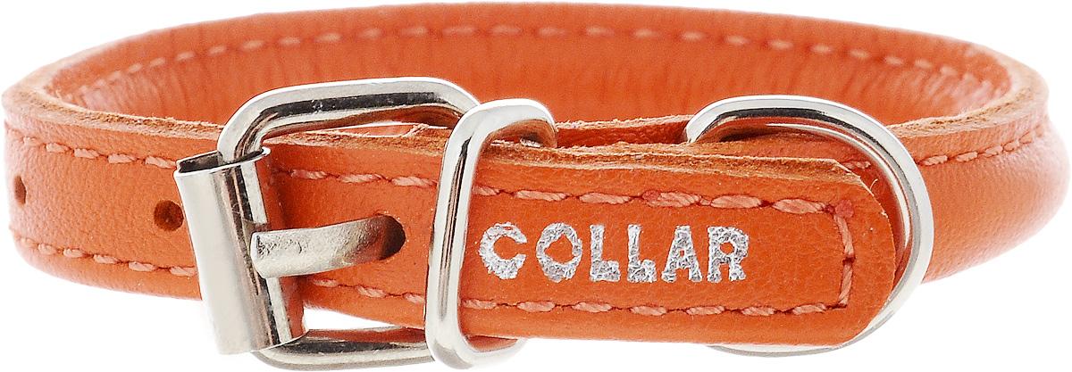 Ошейник для собак CoLLaR Glamour, цвет: оранжевый, диаметр 6 мм, обхват шеи 17-20 см22264Ошейник для собак CoLLaR Glamour, выполненный из натуральной кожи, устойчив к влажности и перепадам температур. Крепкие металлические элементы делают ошейник надежным и долговечным. Изделие отличается высоким качеством, удобством и универсальностью. Размер ошейника регулируется при помощи пряжки, зафиксированной на одном из 3 отверстий. Минимальный обхват шеи: 17 см. Максимальный обхват шеи: 20 см. Диаметр ошейника: 6 мм.