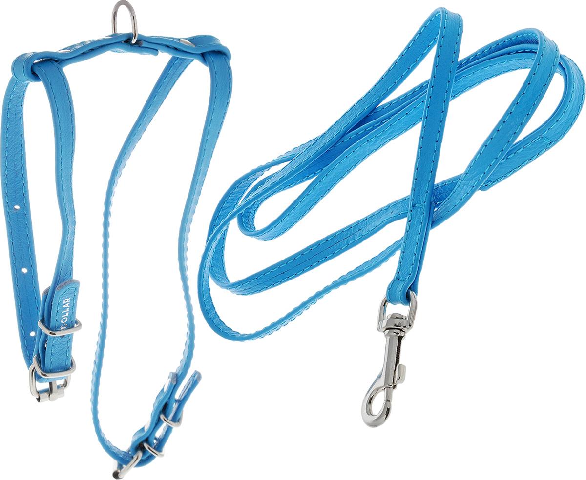 """Шлейка для животных """"CoLLaR Glamour"""", с поводком, цвет: голубой, ширина 9 мм, обхват груди: 30-40 см 33992_голубой"""