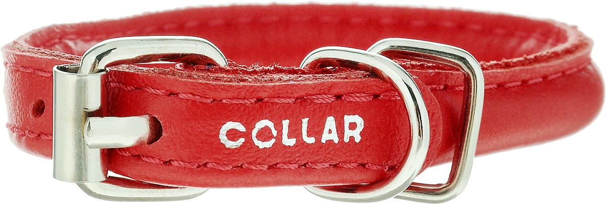 Ошейник для собак CoLLaR Glamour, цвет: красный, диаметр 6 мм, обхват шеи 17-20 см22263Ошейник для собак CoLLaR Glamour, выполненный из натуральной кожи, устойчив к влажности и перепадам температур. Крепкие металлические элементы делают ошейник надежным и долговечным. Изделие отличается высоким качеством, удобством и универсальностью. Размер ошейника регулируется при помощи пряжки, зафиксированной на одном из 3 отверстий. Минимальный обхват шеи: 17 см. Максимальный обхват шеи: 20 см. Диаметр ошейника: 6 мм.
