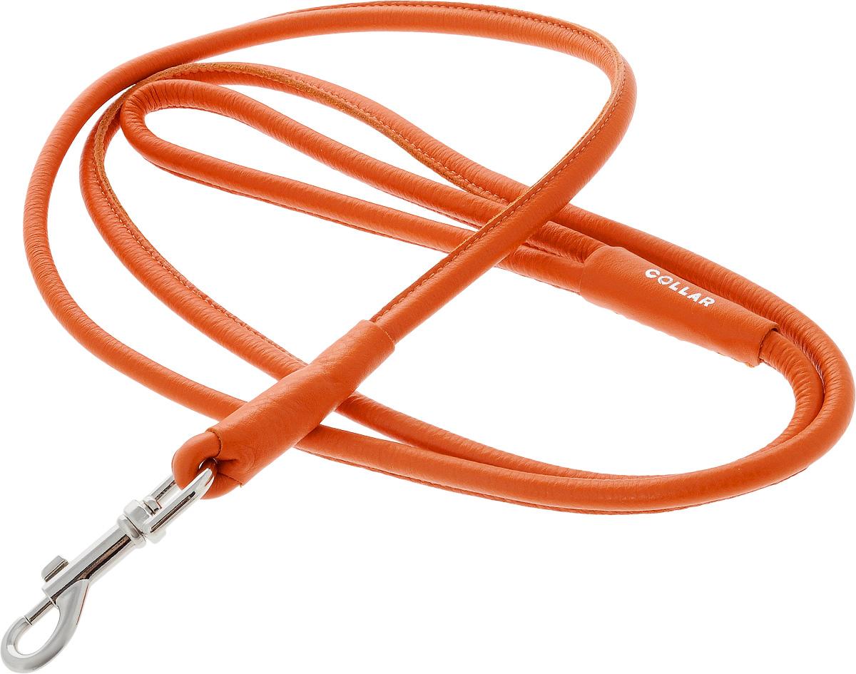 Поводок для собак CoLLaR Glamour, цвет: оранжевый, диаметр 1 см, длина 1,83 м34404Поводок для собак CoLLaR Glamour изготовлен из натуральной кожи и снабжен металлическим карабином. Поводок отличается не только исключительной надежностью и удобством, но и ярким дизайном. Он идеально подойдет для активных собак, для прогулок на природе и охоты. Поводок - необходимый аксессуар для собаки. Ведь в опасных ситуациях именно он способен спасти жизнь вашему любимому питомцу. Длина поводка: 1,83 м. Диаметр поводка: 1 см.