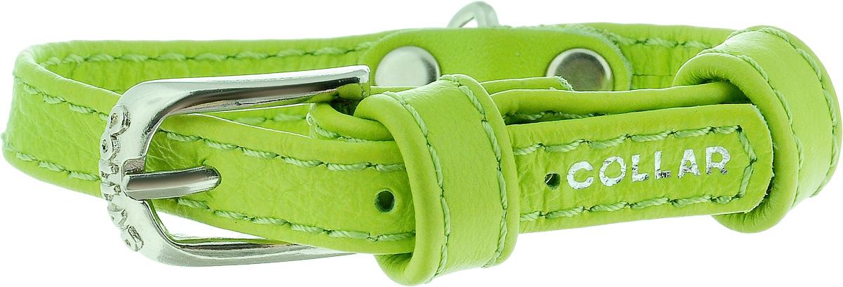 Ошейник для собак CoLLaR Glamour, цвет: зеленый, ширина 9 мм, обхват шеи 18-21 см. 320032005Ошейник CoLLaR Glamour изготовлен из кожи, устойчивой к влажности и перепадам температур. Клеевой слой, сверхпрочные нити, крепкие металлические элементы делают ошейник надежным и долговечным. Изделие отличается высоким качеством, удобством и универсальностью. Размер ошейника регулируется при помощи металлической пряжки. Имеется металлическое кольцо для крепления поводка. Ваша собака тоже хочет выглядеть стильно! Такой модный ошейник станет для питомца отличным украшением и выделит его среди остальных животных. Минимальный обхват шеи: 18 см. Максимальный обхват шеи: 21 см. Ширина: 9 мм.