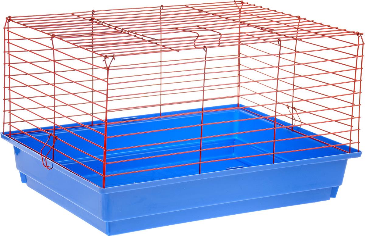Клетка для кролика ЗооМарк, цвет: синий поддон, красная решетка, 60 х 40 х 35 см0120710Классическая клетка ЗооМарк со сплошным дном станет уединенным личным пространством и уютным домиком для кролика. Изделие выполнено из металла и пластика. Клетка надежно закрывается на защелки. Легко чистится. Для более удобной транспортировки клетку можно сложить.