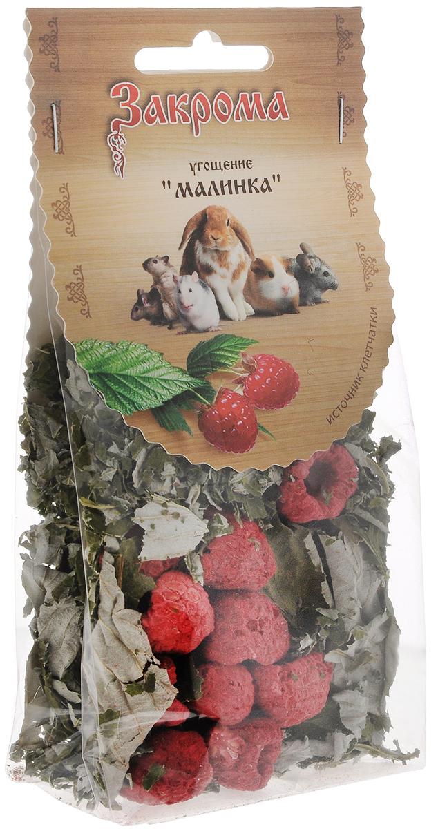 Лакомство для грызунов Закрома Малинка, 15 г0120710Лакомство Закрома Малинка идеально подходит для грызунов. Лакомство является низкокалорийным и полезным дополнением к основномурациону шиншилл, кроликов, крыс, дегу, морских свинок, хомяков и мышек. Угощение изготовлено с применением технологии щадящей сушки с максимальным сохранением дубильных веществ, органических кислот, фитонцидов, минералов и микроэлементов. Лакомство имеет высокое содержание клетчатки для отличного пищеварения.Порадуйте своего любимца качественным и полезным лакомством.Товар сертифицирован.