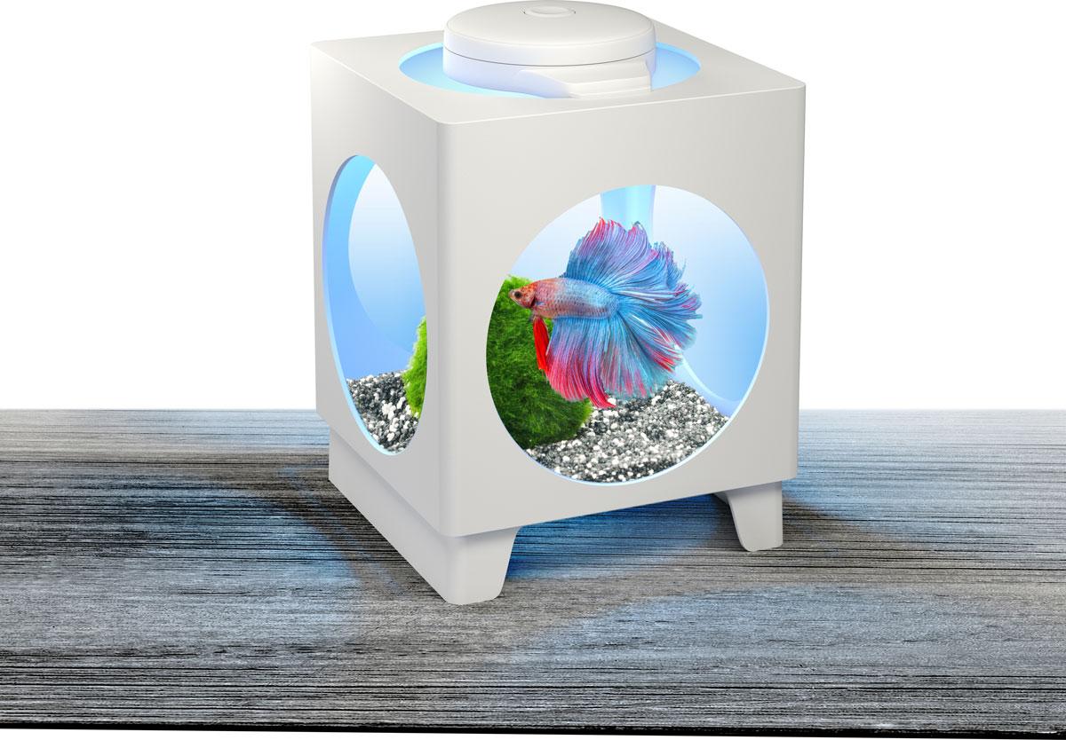 Аквариум-проектор Tetra Betta Projector, 1,8 л258938Аквариум Tetra Betta Projector оснащен адаптером LED освещения, которое можно размещать на разных стенках аквариума, чтобы отражать проекцию прекрасных подводных пейзажей. Изделие выполнено из высококачественного пластика. В комплект входят 3 батарейки Varta типа AAA и инструкция по эксплуатации. Изменяющиеся цвета освещения RGB LEDs: красный, синий, зеленый. Объем аквариума: 1,8 л.