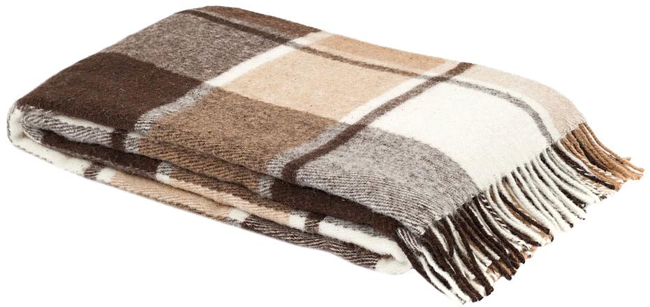 Плед Пиросмани, цвет: бежевый, темно-коричневый, 170 х 200 см. 1-207-170_031-207-170_03Мягкий и приятный плед Пиросмани изготовлен из 100% новозеландской овечьей шерсти. Плед добавит комнате уюта и согреет в прохладные дни. Такое теплое украшение может стать отличным подарком друзьям и близким! Под шерстяным пледом вам никогда не станет жарко или холодно, он помогает поддерживать постоянную температуру тела. Шерсть обладает прекрасной воздухопроницаемостью, она поглощает и нейтрализует вредные вещества и славится своими целебными свойствами. Плед из шерсти станет лучшим лекарством для людей, страдающих ревматизмом, радикулитом, головными и мышечными болями, сердечно-сосудистыми заболеваниями и нарушениями кровообращения. Шерсть не электризуется. Она прочна, износостойка, долговечна. Наконец, шерсть просто приятна на ощупь, ее мягкость и фактура вызывают потрясающие тактильные ощущения! Пиросмани - коллекция пледов с кистями, уменьшенной плотности из 100% натуральной новозеландской овечьей шерсти. Характеристики: Материал: 100%...