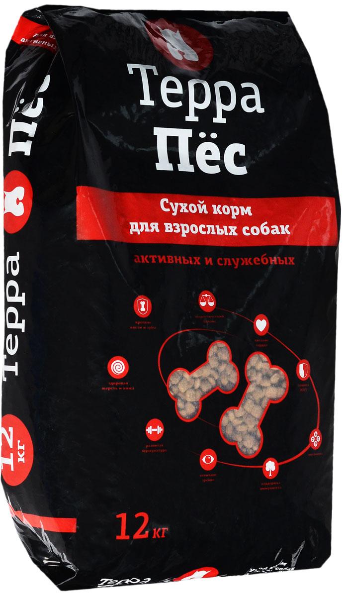 Корм сухой Терра Пес, для взрослых активных и служебных собак, 12 кг0120710Сухой корм Терра Пес - это полноценное сбалансированное питание для взрослых, активных и служебных собак, разработанное с использованием современных технологий. В состав корма входят все необходимые питательные вещества, включая витамины. Корм легко усваивается и имеет прекрасный вкус. Основные питательные вещества гарантируют сильные кости, превосходные мускулы, здоровую кожу и шерсть.Порадуйте своего любимца вкусным и полезным продуктом. Товар сертифицирован.