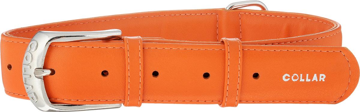 Ошейник для собак CoLLaR Glamour, цвет: оранжевый, ширина 3,5 см, обхват шеи 46-60 см33224Ошейник CoLLaR Glamour изготовлен из натуральной кожи, устойчивой к влажности и перепадам температур. Клеевой слой, сверхпрочные нити, крепкие металлические элементы делают ошейник надежным и долговечным. Размер ошейника регулируется при помощи металлической пряжки. Имеется металлическое кольцо для крепления поводка. Ваша собака тоже хочет выглядеть стильно! Такой модный ошейник станет для питомца отличным украшением и выделит его среди остальных животных. Изделие отличается высоким качеством, удобством и универсальностью. Обхват шеи: 46-60 см. Ширина: 3,5 см.