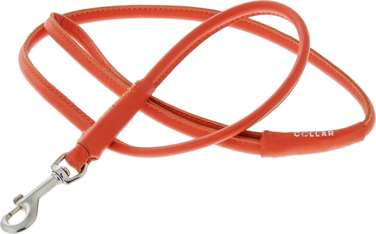 Поводок для собак CoLLaR Glamour, цвет: красный, диаметр 8 мм, длина 1,22 м0120710Поводок для собак CoLLaR Glamour изготовлен из натуральной кожи и снабжен металлическим карабином. Поводок отличается не только исключительной надежностью и удобством, но и ярким дизайном. Он идеально подойдет для активных собак, для прогулок на природе и охоты. Поводок - необходимый аксессуар для собаки. Ведь в опасных ситуациях именно он способен спасти жизнь вашему любимому питомцу.Длина поводка: 1,22 м.Диаметр поводка: 8 мм.