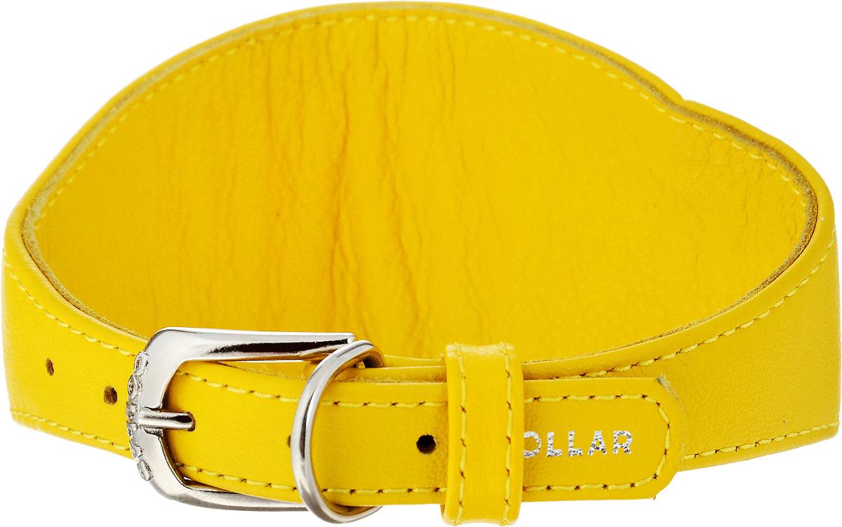 Ошейник для борзых собак CoLLaR Glamour, цвет: желтый, ширина 1,5 см, обхват шеи 29-35 см34668Ошейник для борзых собак CoLLaR Glamour, выполненный из натуральной кожи, устойчив к влажности и перепадам температур. Крепкие металлические элементы делают ошейник надежным и долговечным. Изделие отличается высоким качеством, удобством и универсальностью. Размер ошейника регулируется при помощи пряжки, зафиксированной на одном из 5 отверстий. Ваша собака тоже хочет выглядеть стильно! Такой модный ошейник станет для питомца отличным украшением и выделит его среди остальных животных. Минимальный обхват шеи: 29 см. Максимальный обхват шеи: 35 см. Минимальная ширина: 1,5 см. Максимальная ширина: 6,5 см.