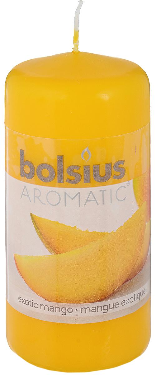 Свеча ароматическая Bolsius Манго, 6 х 6 х 11,5 смUP210DFСвеча ароматическая Bolsius Манго создаст в доме атмосферу тепла и уюта. Свеча приятно смотрится в интерьере, она безопасна и удобна в использовании. Свеча создаст приятное мерцание, а сладкий манящий аромат окутает вас и подарит приятные ощущения.