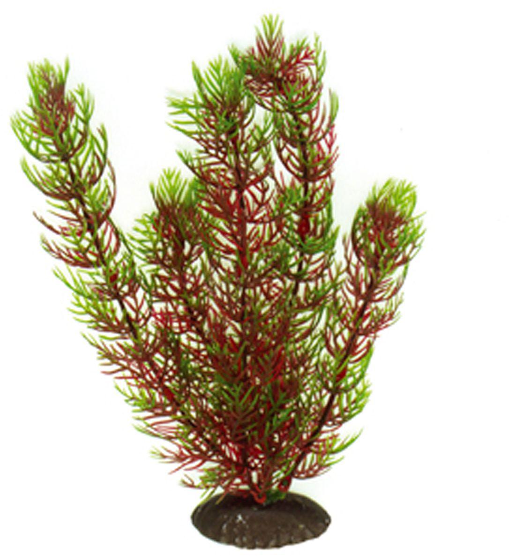 Искусственное растение для аквариума Dezzie, 20 см. 56020265602026Подводное искусственное растение для аквариума Dezzie является неотъемлемой частью композиции аквариума, радует глаз, а также может быть уютным убежищем для рыб и других обитателей аквариума. Пластиковое растение имеет устойчивое дно, которое не нуждается в дополнительном утяжелении и легко устанавливается в грунт. Растение очень практично в использовании, имеет стойкую к воздействию воды окраску и не требует обременительного ухода. Его можно легко достать и протереть тряпкой во время уборки аквариума. Растения из пластика создадут неповторимый дизайн пресноводного или морского аквариума. Высота растения: 20 см.