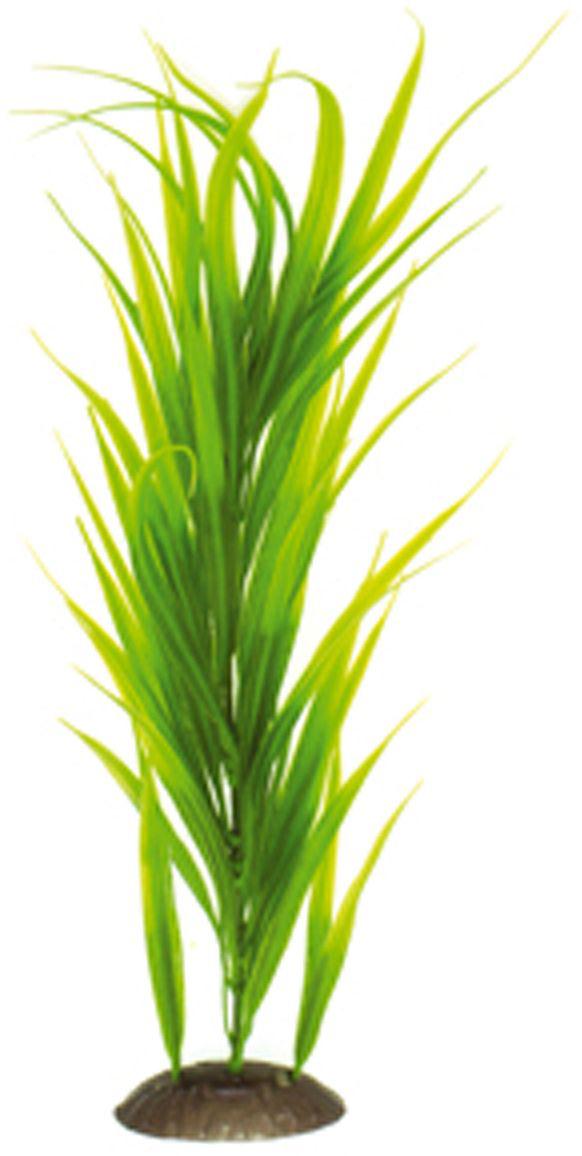 Искусственное растение для аквариума Dezzie, 40 см. 56020950120710Подводное искусственное растение для аквариума Dezzie является неотъемлемой частью композиции аквариума, радует глаз, а также может быть уютным убежищем для рыб и других обитателей аквариума. Пластиковое растение имеет устойчивое дно, которое не нуждается в дополнительном утяжелении и легко устанавливается в грунт. Растение очень практично в использовании, имеет стойкую к воздействию воды окраску и не требует обременительного ухода. Его можно легко достать и протереть тряпкой во время уборки аквариума. Растения из пластика создадут неповторимый дизайн пресноводного или морского аквариума.Высота растения: 40 см.