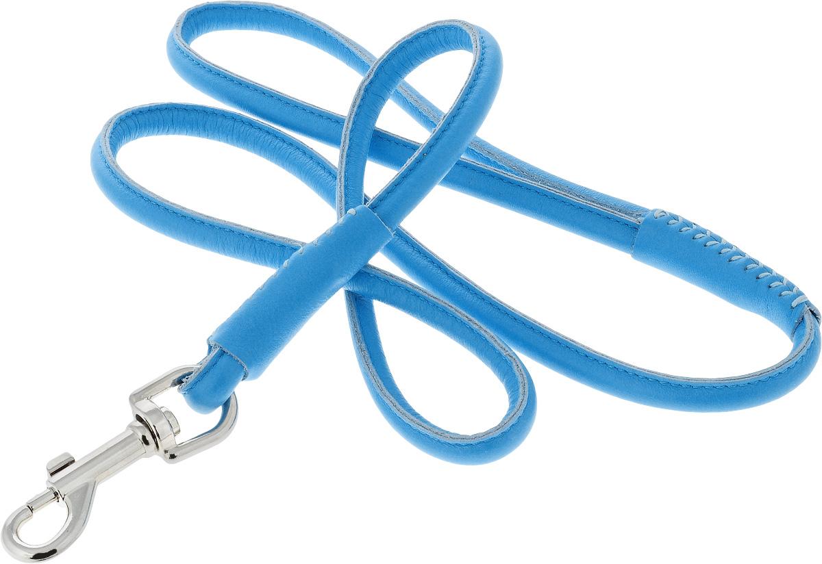 Поводок для собак CoLLaR Glamour, цвет: голубой, диаметр 1 см, длина 1,22 м33782Поводок для собак CoLLaR Glamour изготовлен из натуральной кожи и снабжен металлическим карабином. Поводок отличается не только исключительной надежностью и удобством, но и ярким дизайном. Он идеально подойдет для активных собак, для прогулок на природе и охоты. Поводок - необходимый аксессуар для собаки. Ведь в опасных ситуациях именно он способен спасти жизнь вашему любимому питомцу. Длина поводка: 1,22 м. Диаметр поводка: 1 см.