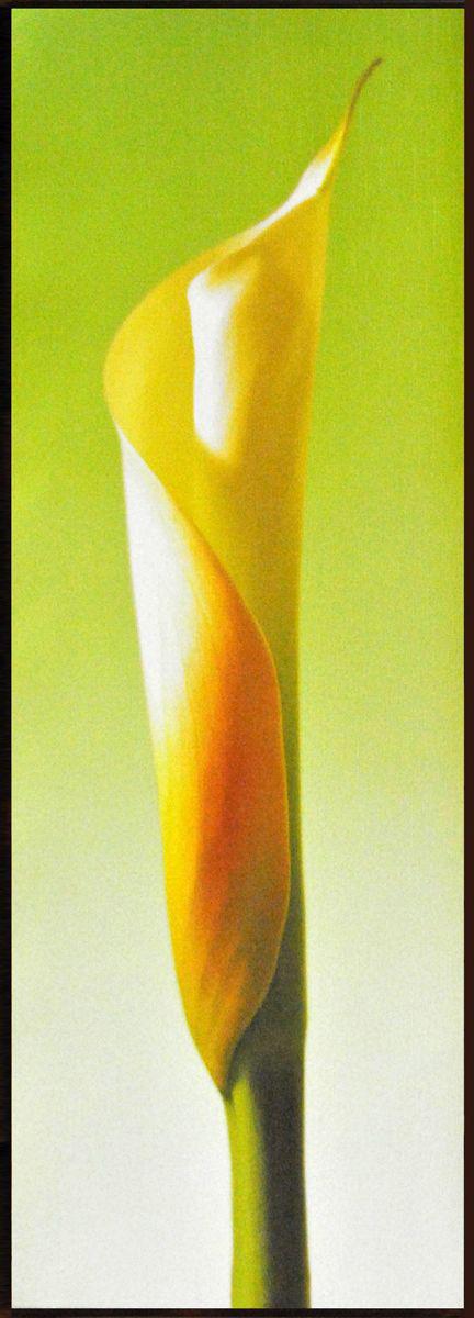 Декобокс СолоДомДекор Калла на зеленом 2, 25х70 см2000191902570