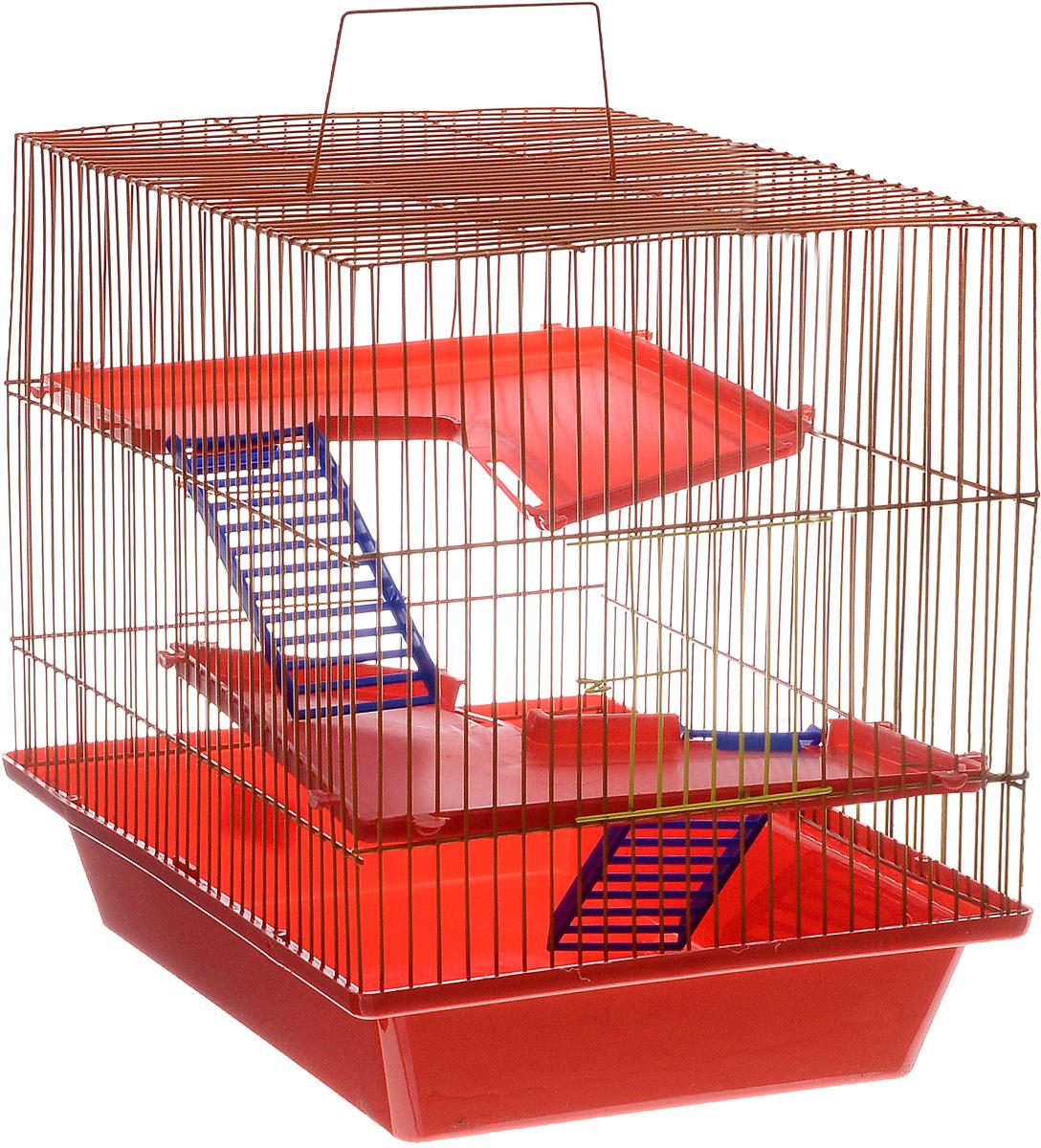 Клетка для грызунов ЗооМарк Гризли, 3-этажная, цвет: красный поддон, оранжевая решетка, красные этажи, 41 х 30 х 36 см230КОКлетка ЗооМарк Гризли, выполненная из полипропилена и металла, подходит для мелких грызунов. Изделие трехэтажное. Клетка имеет яркий поддон, удобна в использовании и легко чистится. Сверху имеется ручка для переноски. Такая клетка станет уединенным личным пространством и уютным домиком для маленького грызуна.