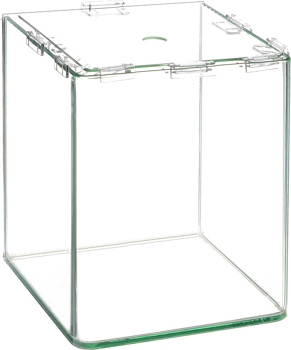 Аквариум Dennerle NanoCube, 30 л0120710Аквариум Dennerle NanoCube идеально подходит для содержания небольшого уголка природы в офисе, на столе, на кухне, в ванной комнате, прихожей или гостиной. Аквариум изготовлен из высококачественного стекла, передние углы бесшовные и оснащен покровной крышкой. В комплект входят черная пленка для задней стенки и пластиковые подкладки.