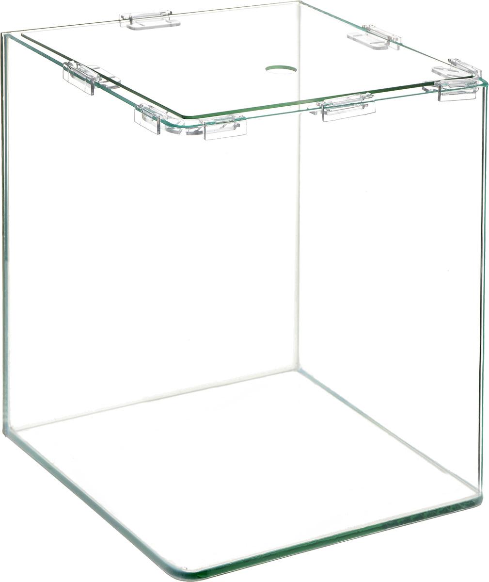 Аквариум Dennerle NanoCube, 20 л0120710Аквариум Dennerle NanoCube идеально подходит для содержания небольшого уголка природы в офисе, на столе, на кухне, в ванной комнате, прихожей или гостиной. Аквариум изготовлен из высококачественного стекла, передние углы бесшовные и оснащен покровной крышкой. В комплект входят черная пленка для задней стенки и пластиковые подкладки.