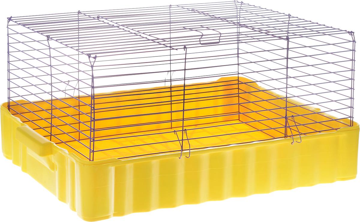 Клетка для кроликов ЗооМарк, цвет: желтый поддон, фиолетовая решетка, 75 х 46 х 40 см640ЖФКлетка для кроликов ЗооМарк, выполненная из металла и пластика, предназначена для содержания вашего любимца. Клетка имеет прямоугольную форму и очень просторна. Размеры позволят оснастить клетку всеми необходимыми предметами. Она очень легко собирается и разбирается. Такая клетка станет для вашего питомца уютным домиком и надежным убежищем.