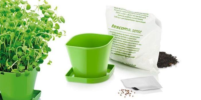 Набор для выращивания пряных растений Tescoma Sense. Орегано. 899070899070Идеально подходит для выращивания трав в домашних условиях. Комплект включает в себя семена, органический субстрат и горшок сделанный из прочного пластика. Инструкция по применению внутри пакета. Материал: пластик