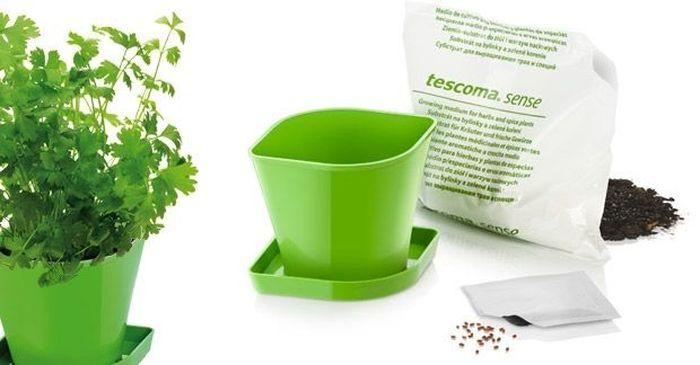Набор для выращ-ия пряных растений Tescoma Sense. Кориандр. 899073899073Набор для выращивания пряных растений SENSE Кориандр включает в себя семена, органический почвенный субстрат био-качества и цветочный горшок из прочного пластика. Инструкция по применению внутри упаковки.