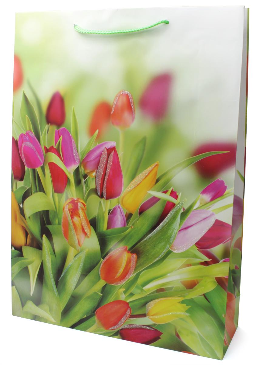 Пакет подарочный МегаМАГ Premium. Тюльпаны, 32,4 х 44,5 х 10,2 см. 504 XLZ-0307Подарочный пакет МегаМАГ, изготовленный из плотной ламинированной бумаги, станет незаменимым дополнением к выбранному подарку. Для удобной переноски на пакете имеются ручки-шнурки.Подарок, преподнесенный в оригинальной упаковке, всегда будет самым эффектным и запоминающимся. Окружите близких людей вниманием и заботой, вручив презент в нарядном, праздничном оформлении.