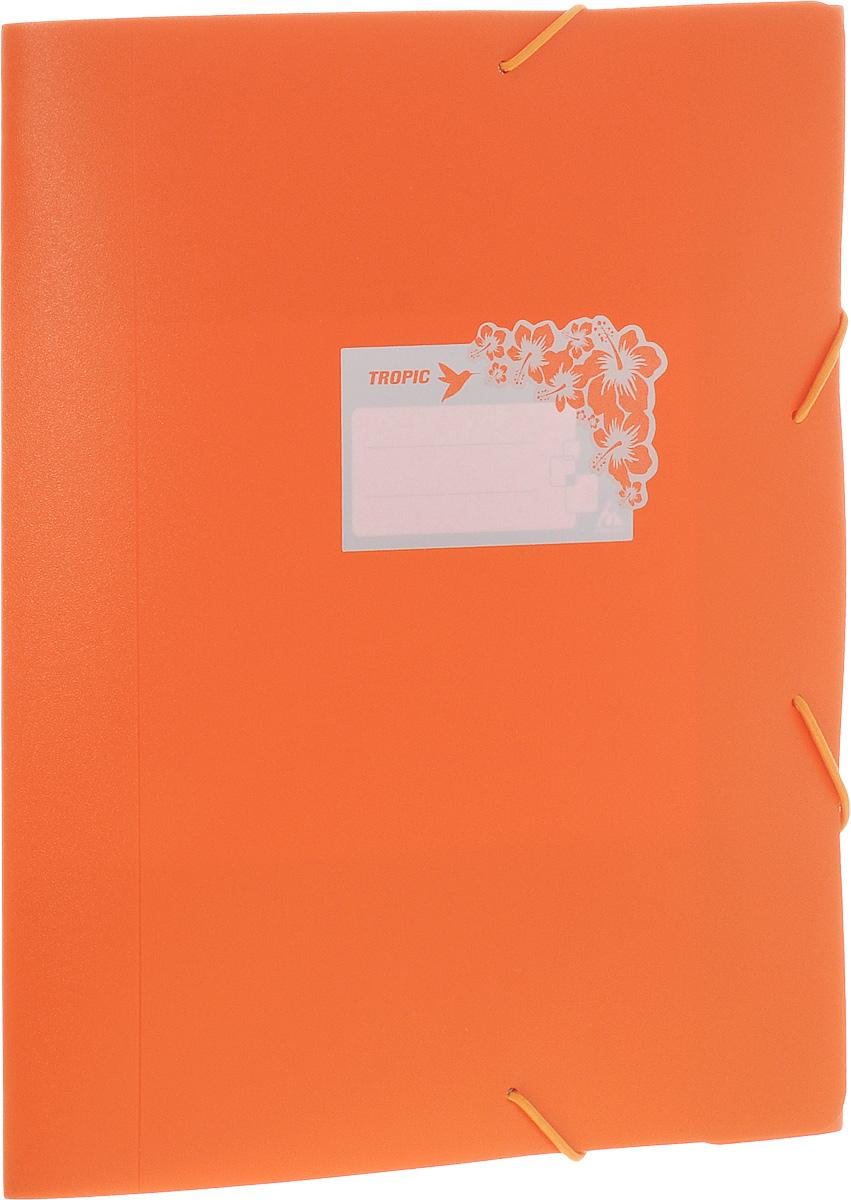 Бюрократ Папка-короб на резинке Tropic формат А4+ цвет оранжевый816252__оранжевыйПапка-короб на резинке Tropic - это удобный и функциональный офисный инструмент, предназначенный для хранения и транспортировки большого объема рабочих бумаг и документов формата А4+. На лицевой стороне папки имеется место для ФИО владельца, оформленное рисунком с тропическими цветами. Папка изготовлена из жесткого, но гибкого фактурного пластика и закрывается при помощи угловых резинок. Резинки не позволят папке раскрыться в неподходящий момент. Папка надежно сохранит ваши документы и сбережет их от повреждений, пыли и влаги.