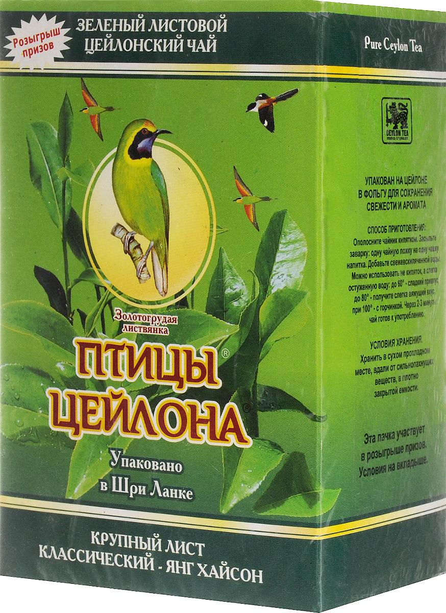 Птицы Цейлона Золотогрудая листвянка чай зеленый листовой, 250 г0120710Зеленый крупнолистовой чай Птицы Цейлона Золотогрудая листвянка, в состав которого входят только самые молодые и лучшие листочки чайного куста. Поэтому этот чай имеет особый мягкий сладковатый вкус и аромат настоящего зеленого чая и оказывает благотворное влияние на организм.