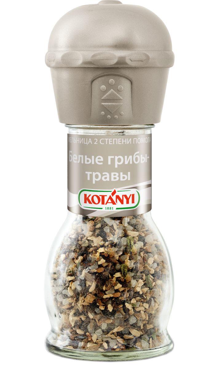 Kotanyi Белые грибы-травы, 42 г412211Изысканная смесь белых грибов и ароматных трав улучшит вкус мясных и овощных блюд, а также соусов, салатов и супов. Внимание! Может содержать следы глютеносодержащих злаков, яиц, сои, сельдерея, кунжута, орехов, молока (лактозы), горчицы. Уважаемые клиенты! Обращаем ваше внимание, что полный перечень состава продукта представлен на дополнительном изображении.