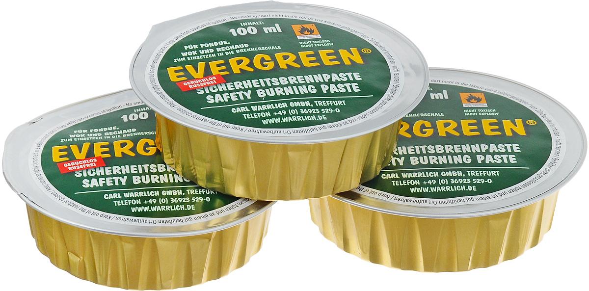Горючее для фондю Carl Warrlich Evergreen, 3 х 100 мл115610Горючее для фондю Carl Warrlich Evergreen - очень удобное средство и является источником тепла для приготовления фондю. Также заменяет средство для розжига для мангалов, грилей. Гель безопасен, не токсичен, горит без запаха и гари, безвреден для окружающей среды, он изготовлен на основе чистого этанола. Набор включает в себя три баночки с гелем, выполненные из алюминиевой фольги.Объем одной баночки с гелем: 100 мл.Количество баночек: 3 шт.