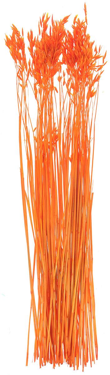 Украшение декоративное Lovemark Пучок овса, цвет: оранжевый, длина 70 см6028Украшение декоративное Пучок овса - великолепный подарок себе и вашим близким. Этот очаровательный предмет интерьера будет приковывать взгляды ваших гостей. Изделия из соломы несут в себе энергию солнечных лучей. Несмотря на свой хрупкий вид, cолома - прочный и долговечный материал, а значит не помнется и не поломается со временем. Рекомендации по уходу: изделие должно находиться в сухом помещении.