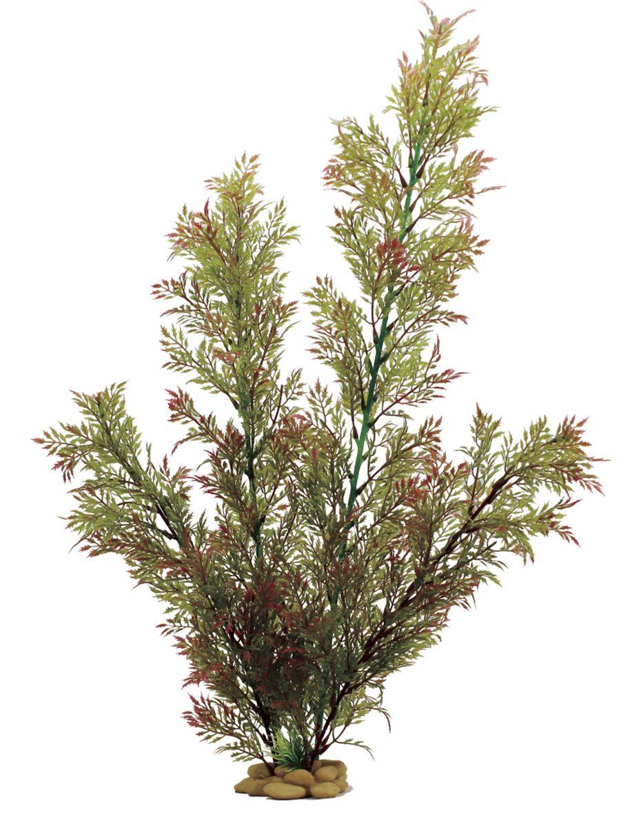 Растение для аквариума ArtUniq Папоротник индийский красно-зеленый, высота 60 смART-1110104Растение для аквариума ArtUniq Папоротник индийский красно-зеленый, высота 60 см