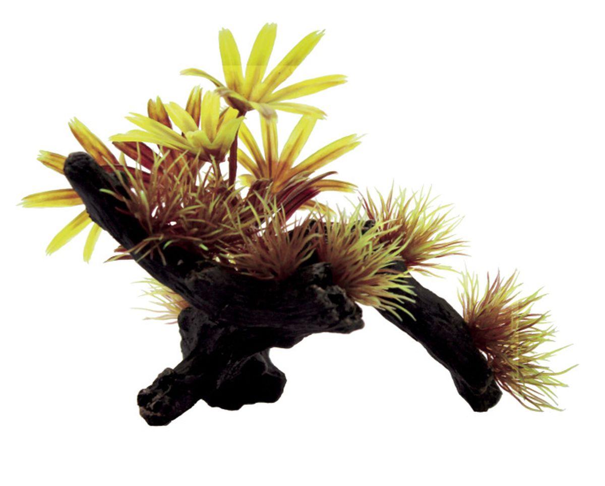 Композиция из растений для аквариума ArtUniq Бамбуза на коряге, 20 x 14 x 10 смART-1130411Композиция из растений для аквариума ArtUniq Бамбуза на коряге, 20 x 14 x 10 см