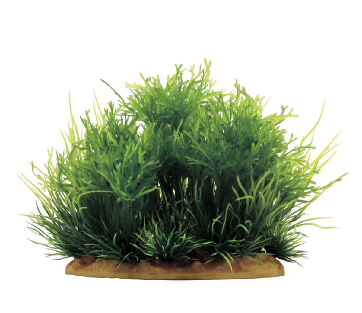 Растение для аквариума ArtUniq Мох, 15 x 10 x 15 см0120710Растение для аквариума ArtUniq Мох, 15 x 10 x 15 см