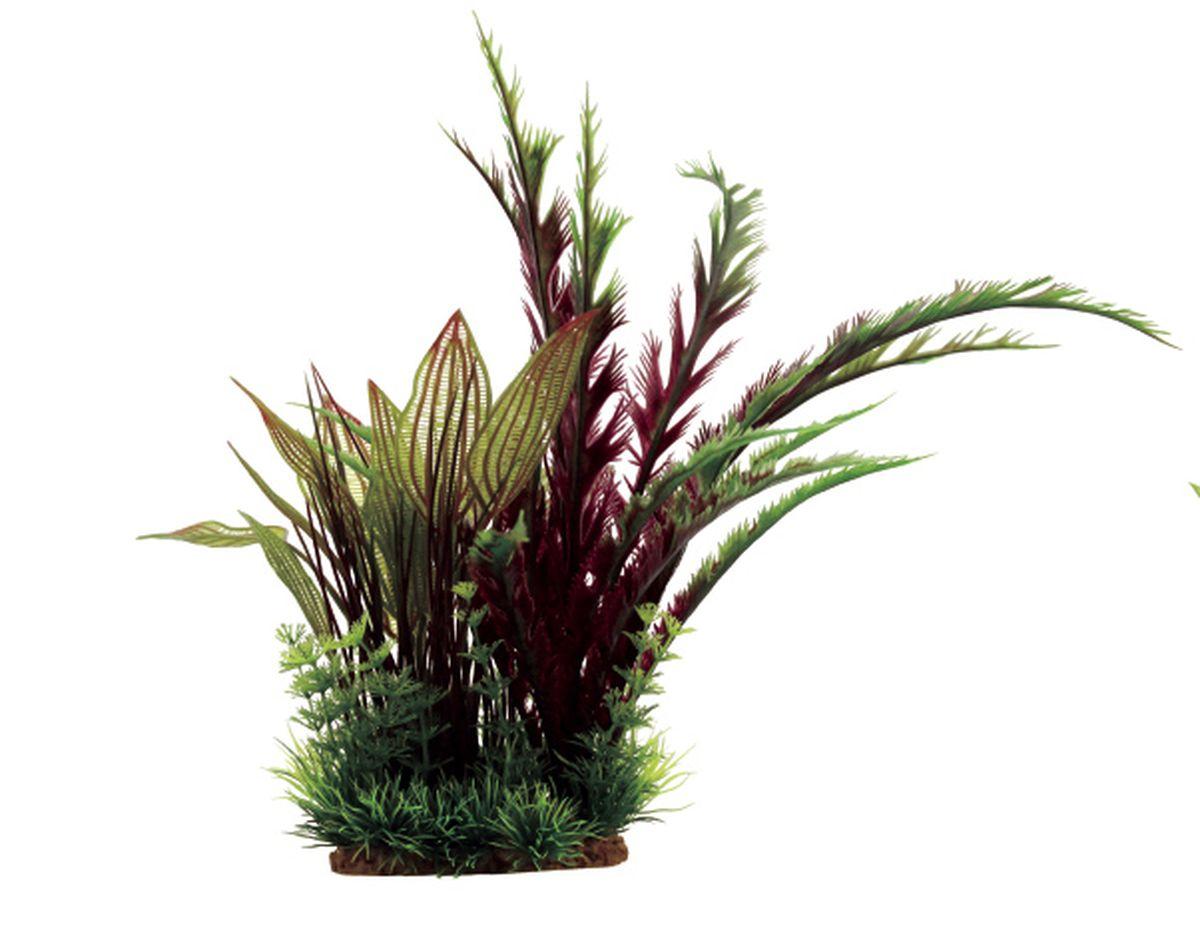 Композиция из растений для аквариума ArtUniq Дизиготека красная, 22 x 18 x 31 смART-1130805Композиция из растений для аквариума ArtUniq Дизиготека красная, 22 x 18 x 31 см