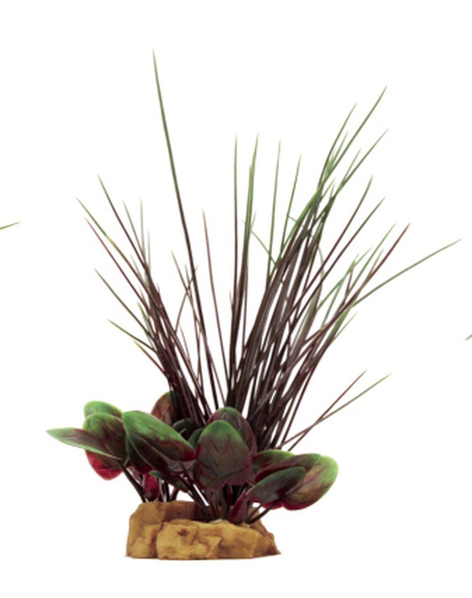 Композиция из растений для аквариума ArtUniq Валлиснерия, 13 x 10 x 25 см0120710Композиция из растений для аквариума ArtUniq Валлиснерия, 13 x 10 x 25 см