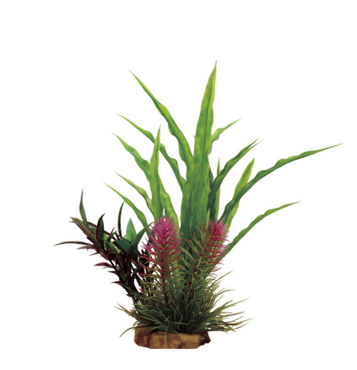 Композиция из растений для аквариума ArtUniq Криптокорина, 16 x 15 x 22 смART-1130811Композиция из растений для аквариума ArtUniq Криптокорина, 16 x 15 x 22 см
