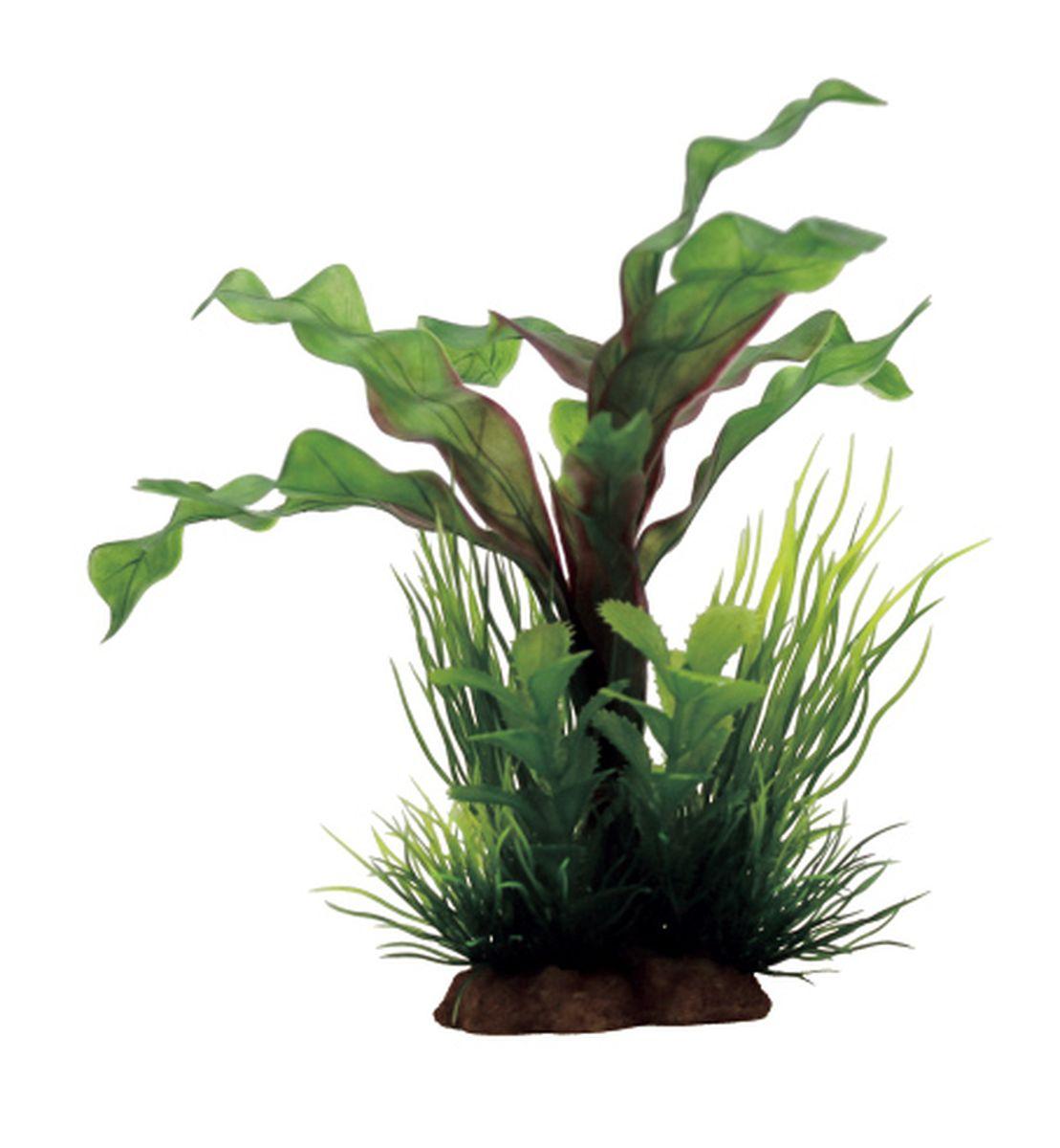 Композиция из растений для аквариума ArtUniq Апоногетон, 12 x 10 x 20 смART-1130814Композиция из растений для аквариума ArtUniq Апоногетон, 12 x 10 x 20 см
