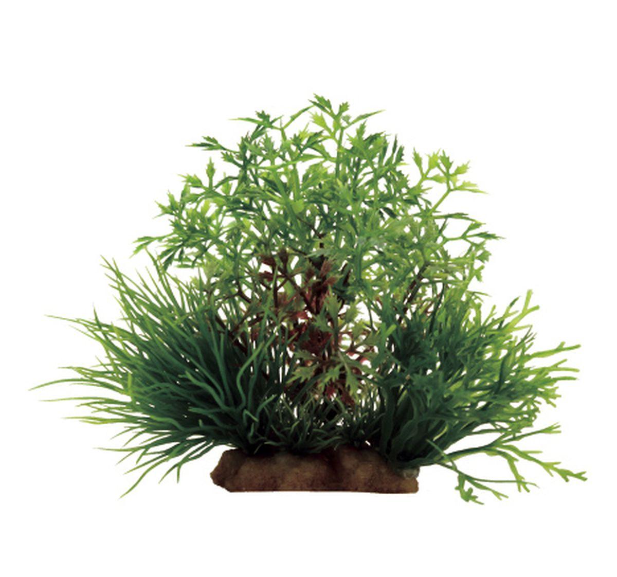 Композиция из растений для аквариума ArtUniq Перистолистник, 16 x 12 x 10 смART-1130905Композиция из растений для аквариума ArtUniq Перистолистник, 16 x 12 x 10 см