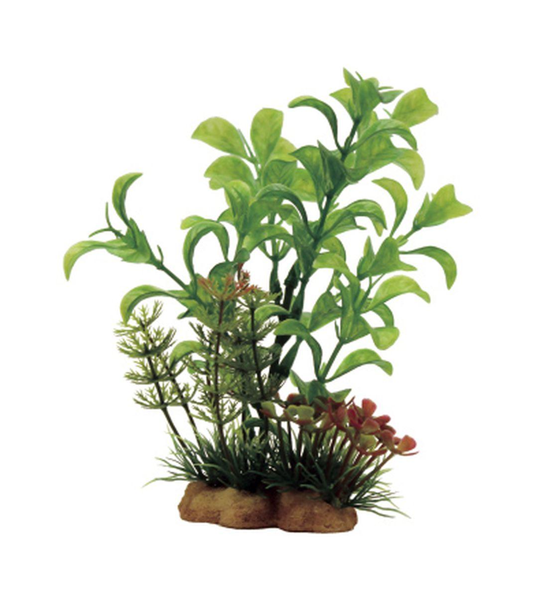 Композиция из растений для аквариума ArtUniq Людвигия, 10 x 5 x 13 смART-1130908Композиция из растений для аквариума ArtUniq Людвигия, 10 x 5 x 13 см