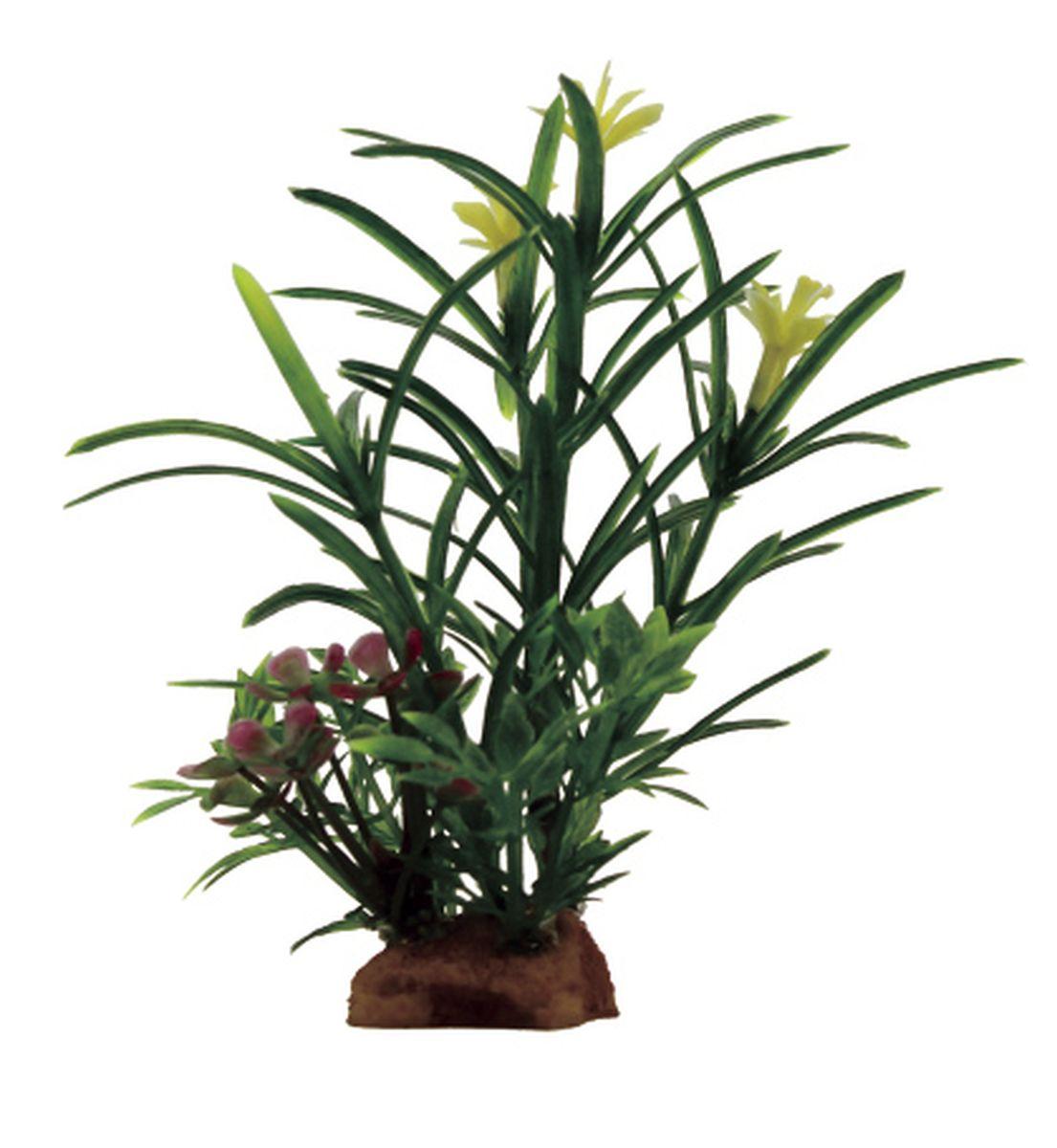 Композиция из растений для аквариума ArtUniq Эустералис, 8 x 7 x 14 смART-1130913Композиция из растений для аквариума ArtUniq Эустералис, 8 x 7 x 14 см