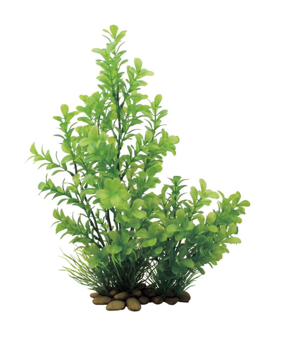 Растение для аквариума ArtUniq Прозерпинака, высота 30 смART-1150202Растение для аквариума ArtUniq Прозерпинака, высота 30 см