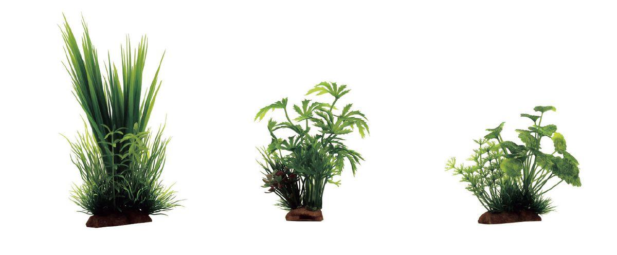 Растение для аквариума ArtUniq Акорус, абутилон, щитолистник, высота 10-20 см, 3 штART-1170103Растение для аквариума ArtUniq Акорус, абутилон, щитолистник, высота 10-20 см, 3 шт