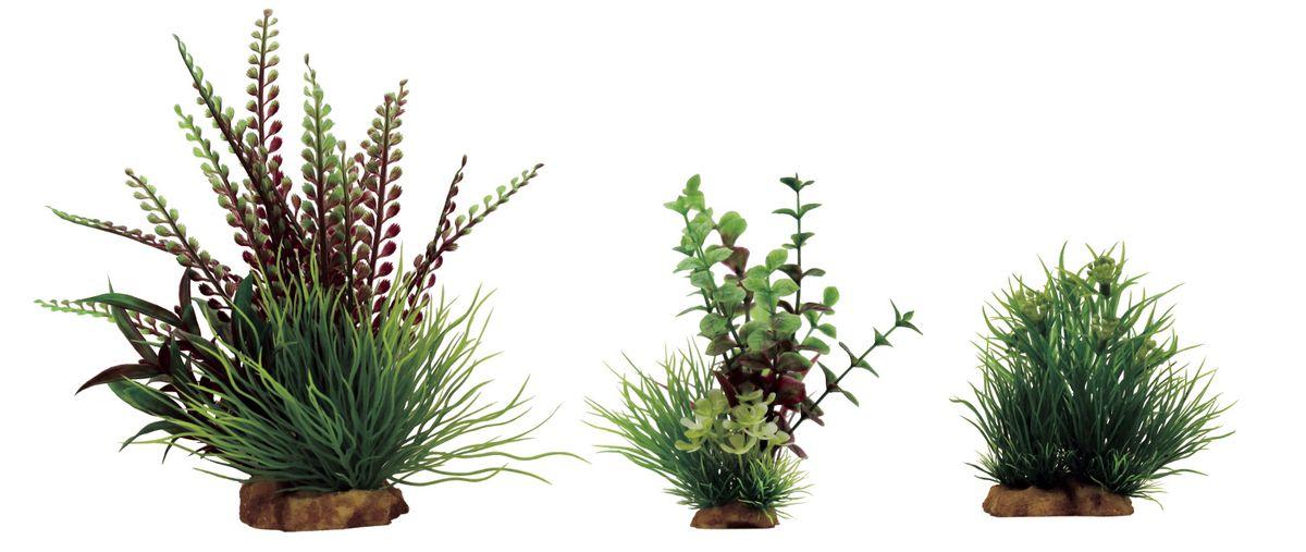 Растение для аквариума ArtUniq Гигрофила перистонадрезанная, лизимахия, саггитария, высота 10-23 см, 3 штART-1170301Растение для аквариума ArtUniq Гигрофила перистонадрезанная, лизимахия, саггитария, высота 10-23 см, 3 шт