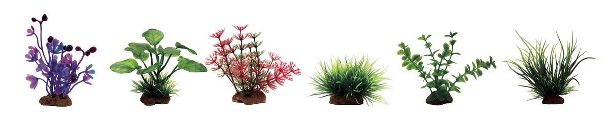 Растение для аквариума ArtUniq Марсилия фиолетовая, анубиас, амбулия красная, лилеопсис, лизимахия, ситняг, высота 7-10 см, 6 шт0120710Растение для аквариума ArtUniq Марсилия фиолетовая, анубиас, амбулия красная, лилеопсис, лизимахия, ситняг, высота 7-10 см, 6 шт