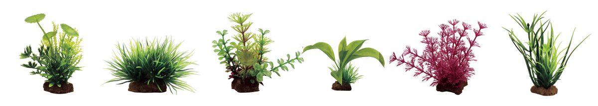 Растение для аквариума ArtUniq Лютик водный, лилеопсис, амбулия, альтернантера бетзикиана, кабомба красная, лагаросифон, высота 7-10 см, 6 штART-1170405Растение для аквариума ArtUniq Лютик водный, лилеопсис, амбулия, альтернантера бетзикиана, кабомба красная, лагаросифон, высота 7-10 см, 6 шт